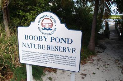 Little Cayman Booby Pond Nature Reserve