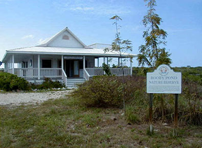 Visit the Little Cayman National Trust House and Visitor Centre