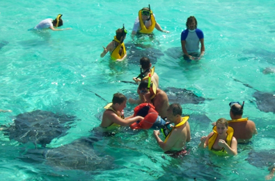 Visit Stingray City