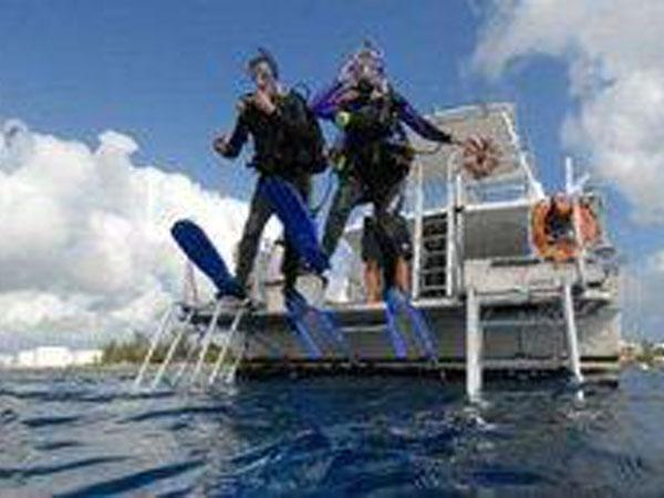 Vote for Dive Operators for 2015